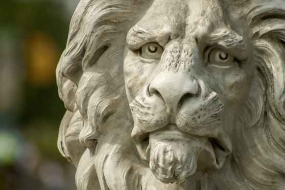 lion-statue-zoo-37609.jpeg